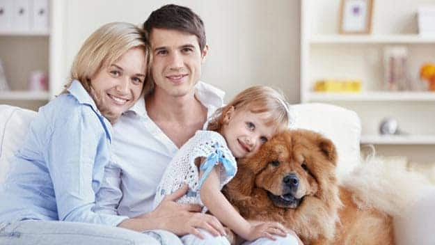 Wills & Trusts dog-young-family Direct Wills Newcastle-under-Lyme